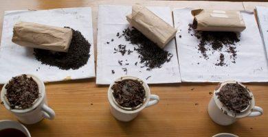 Formación de té